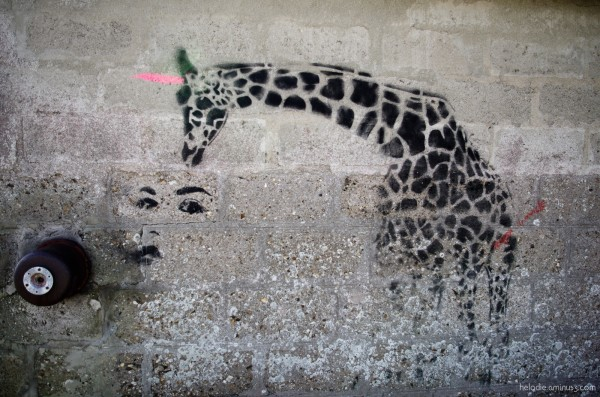 Girafe du Lohic