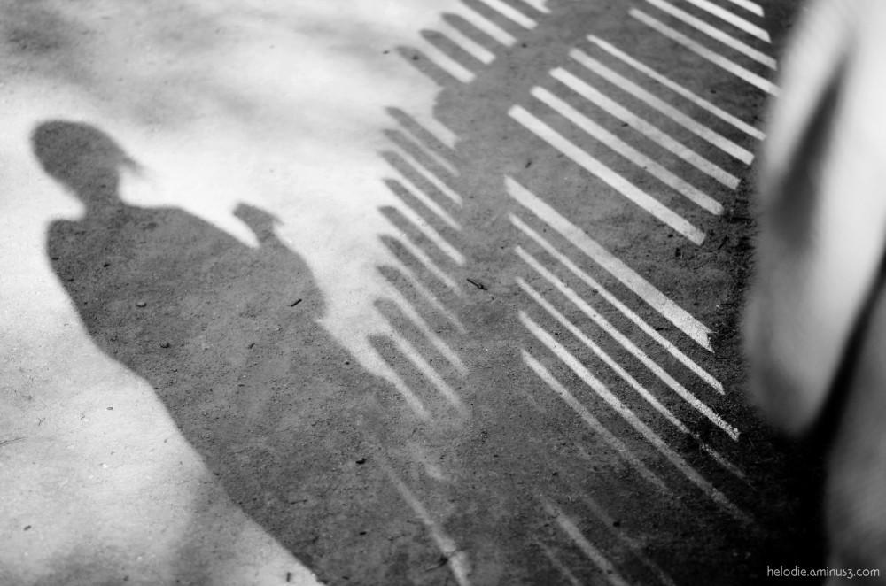 L'ombre aux piquets