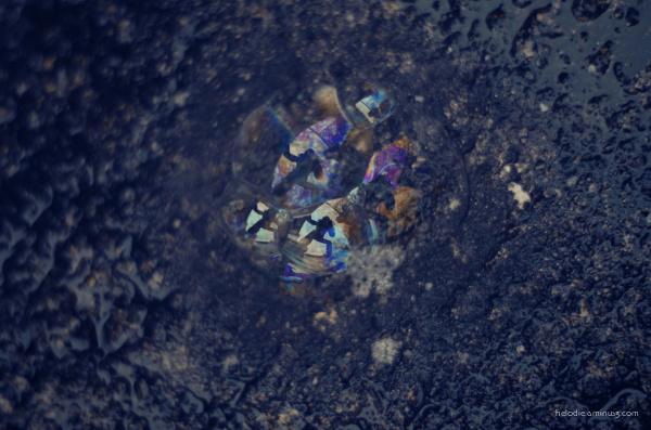 Autoportrait aux bulles des airs
