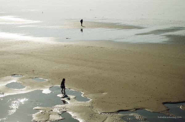 Les bords de mer