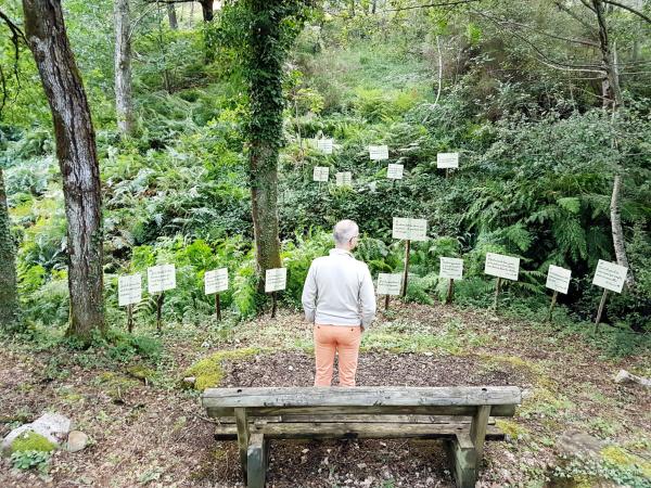 Forêt de citations