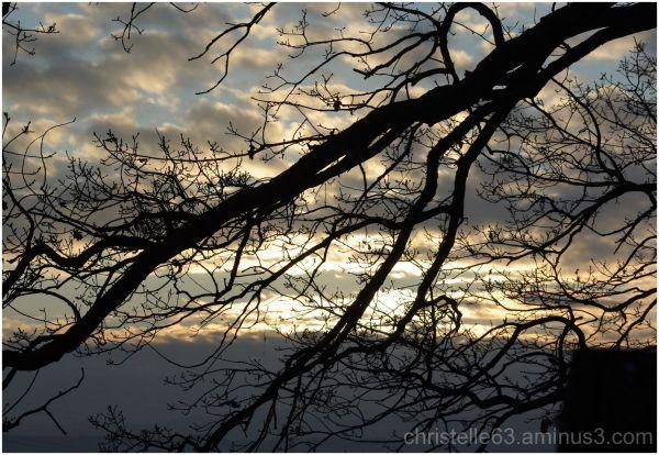 coucher de soleil nature