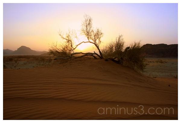 Biblical Visions, Wadi Rum, Jordan