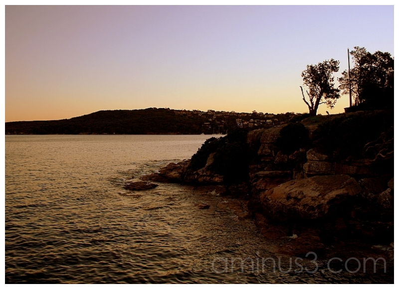 Dusk on the Harbour, Fairlight, Australia