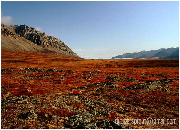 Valley Floor to the North (Anaktuvuk Pass)