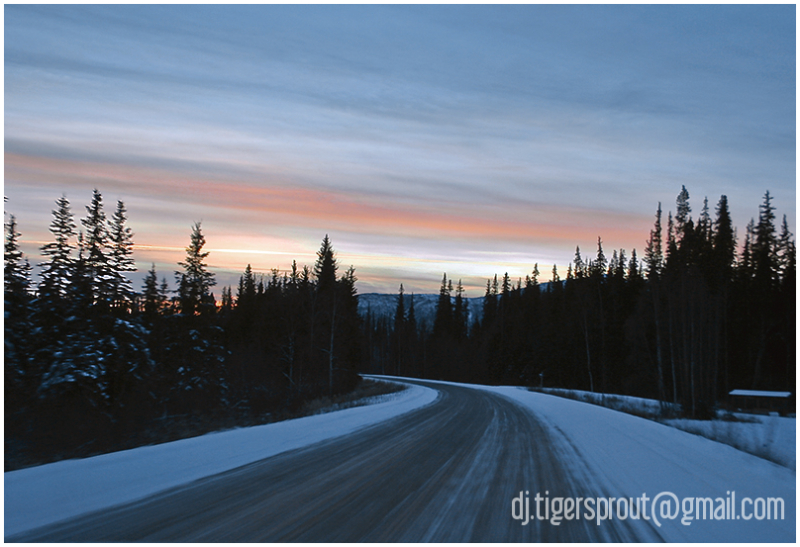 A Winter's Twilight Glory, Central Alaska
