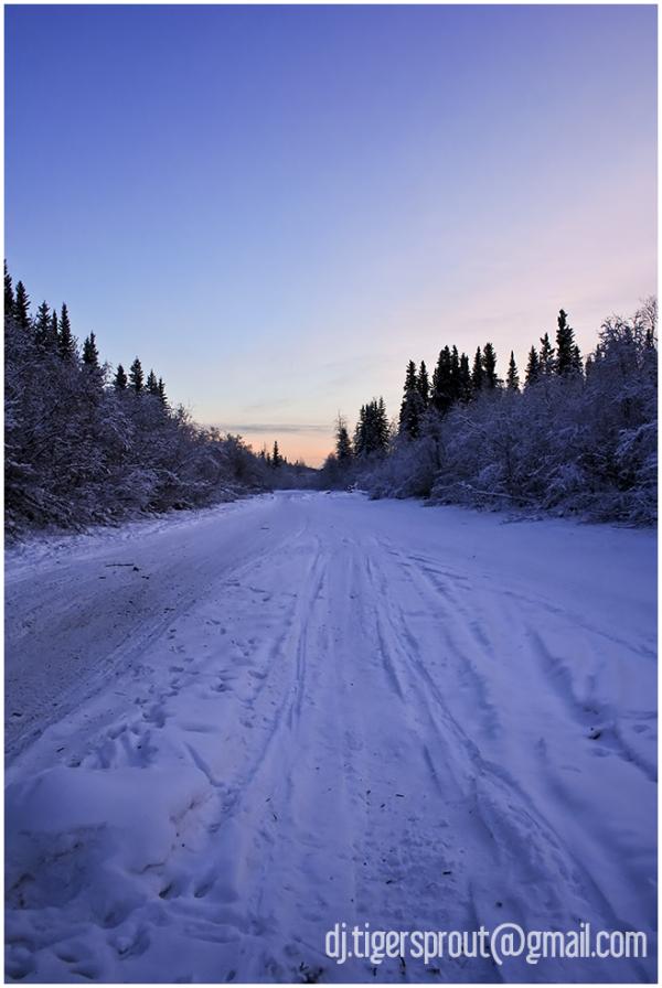 Quarter Past Noon on the Slough, Fairbanks, Alaska