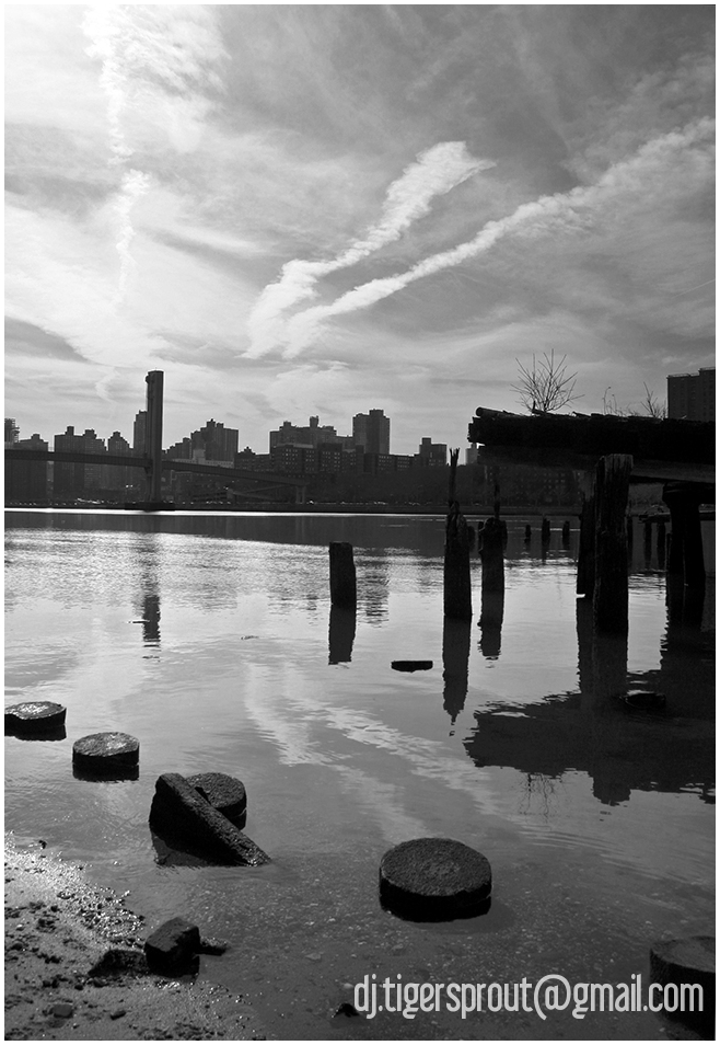 Defunct Jetty (Mono) East River, NYC