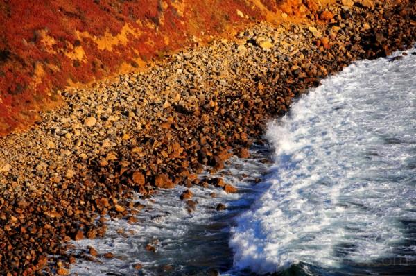 cheery tides.. rocky shore