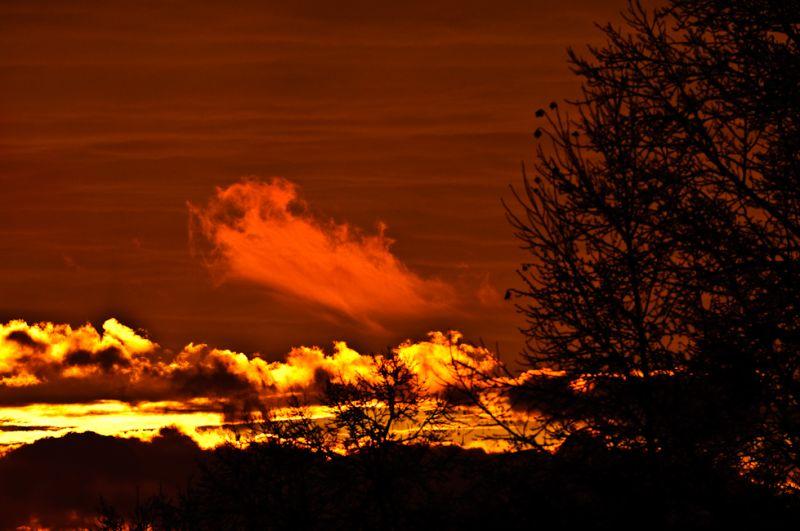Ice Storm Sunset 2