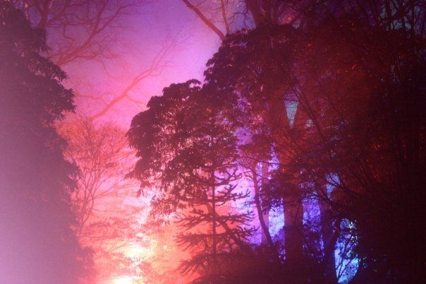 Colourful Mist