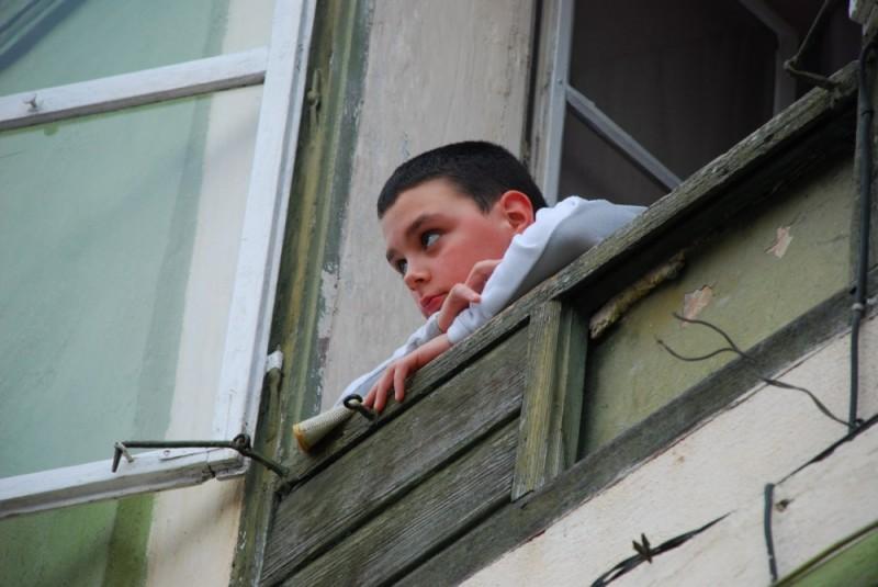 up the rabbit - window