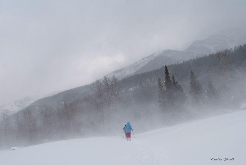 Nice Day for a Ski