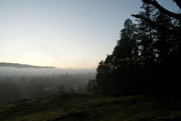 Foggy Valley 2