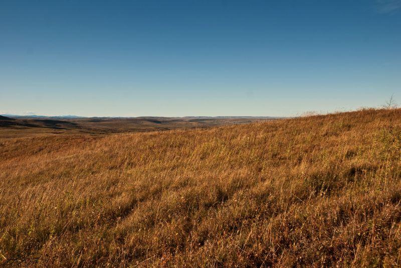 Autumn Prairie 2