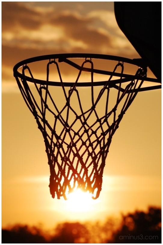 Basketball Sun