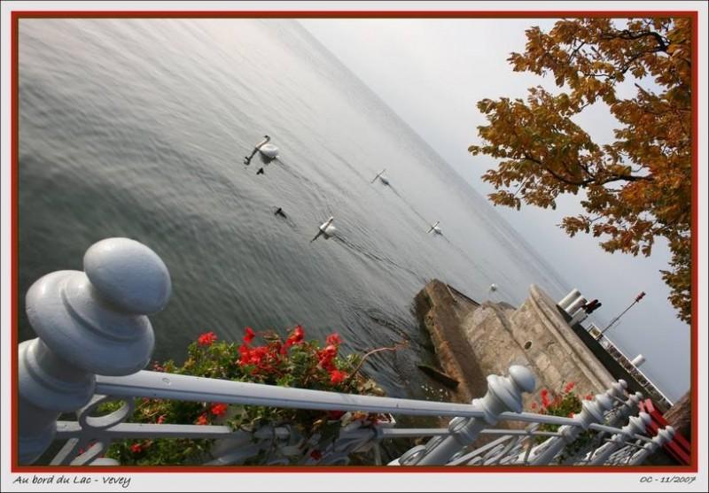 Lake side Vevey