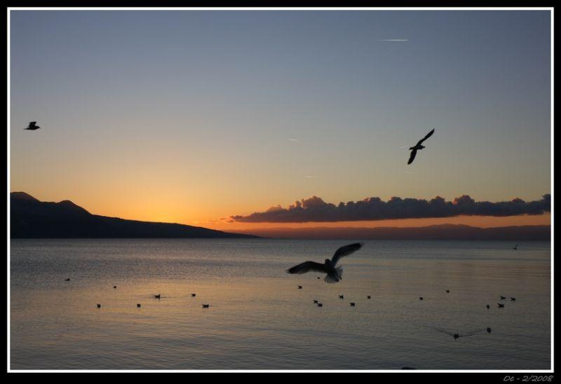 Light on the lake, sunset