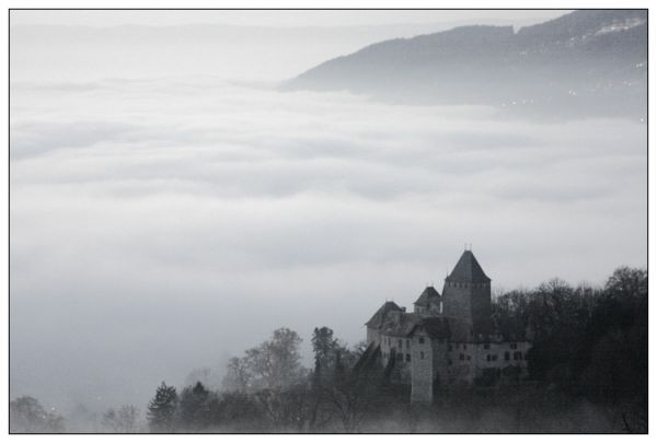 Castle in the fog -  Blonay