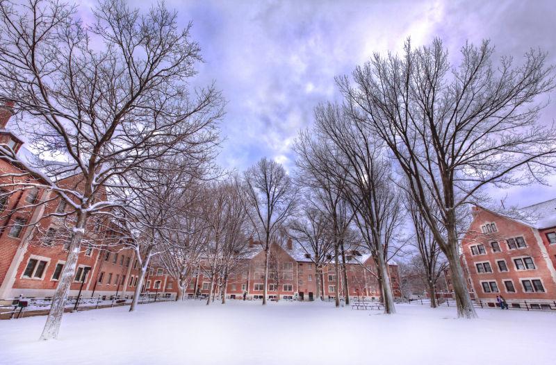 Winter in Purdue is Bleak