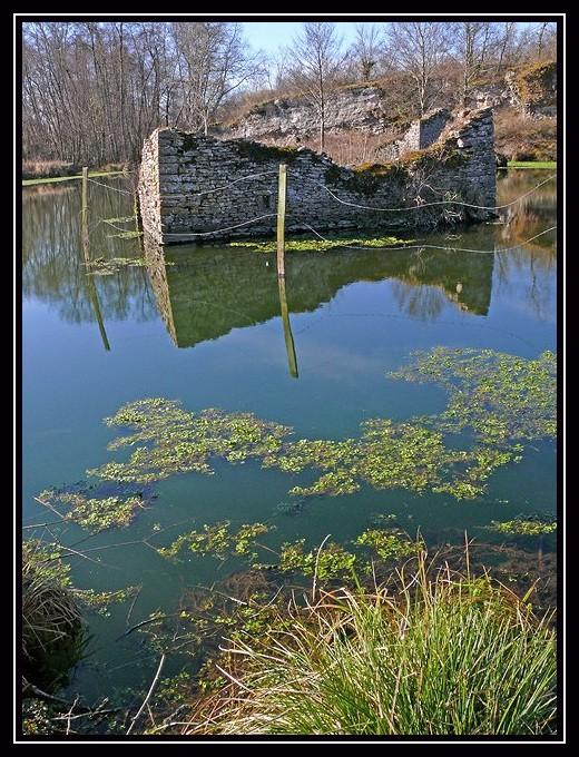 L'étang des peintres (suite)