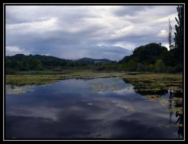Le petit étang...