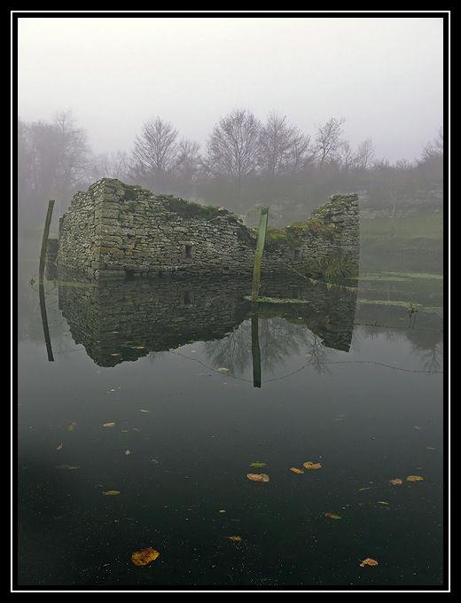 L'étang dans le brouillard (2)