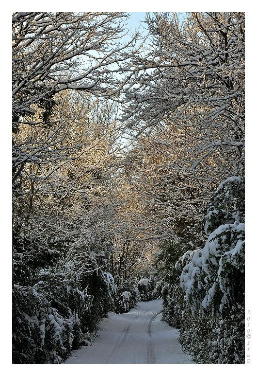 Le chemin sous la neige (2)