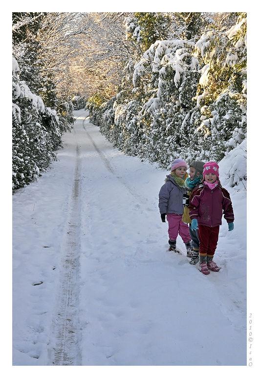 Le chemin sous la neige (3)