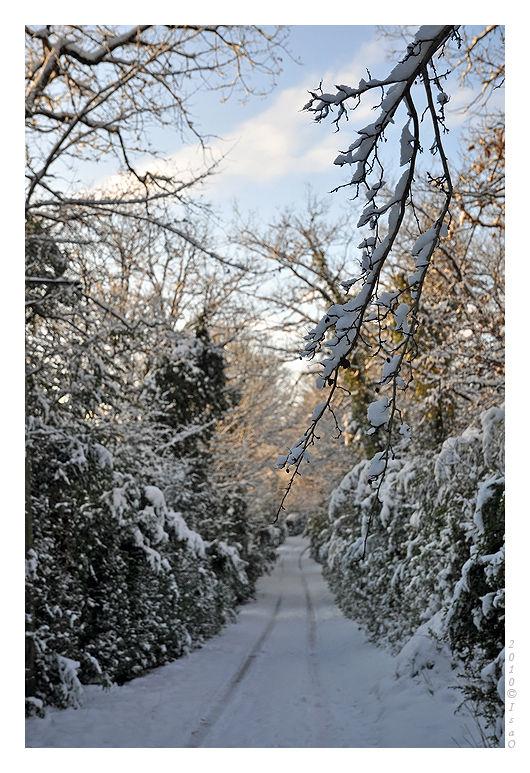 Le chemin sous la neige (4)