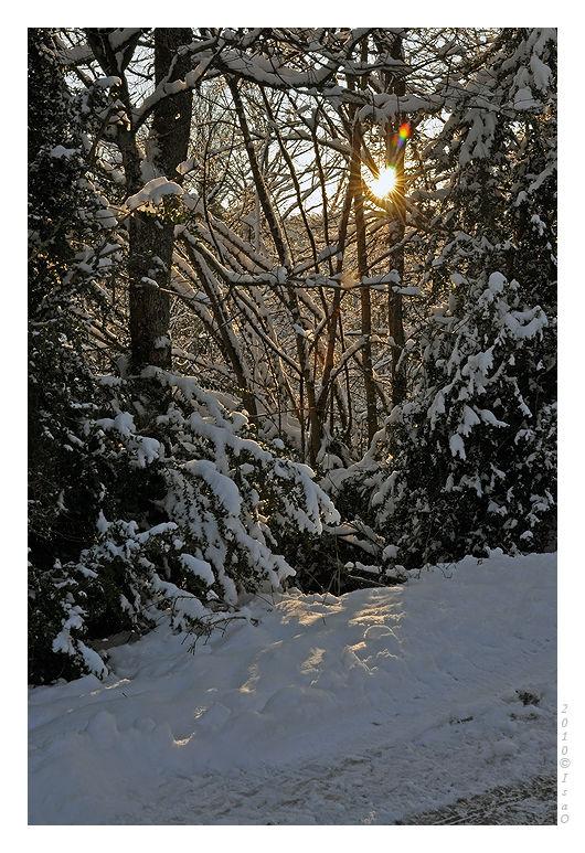 Le chemin sous la neige (6)