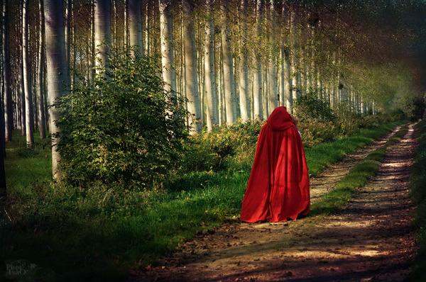 Chaperon rouge... à ma façon ;-) 01
