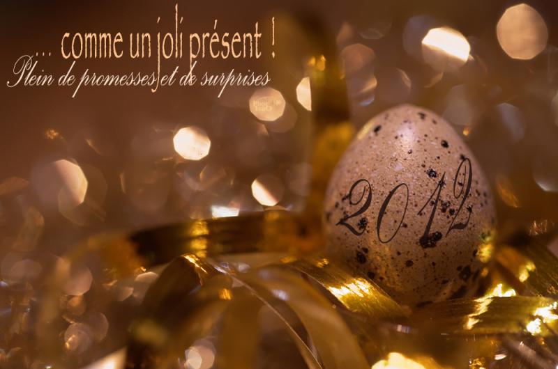 Belle année 2012 !!!
