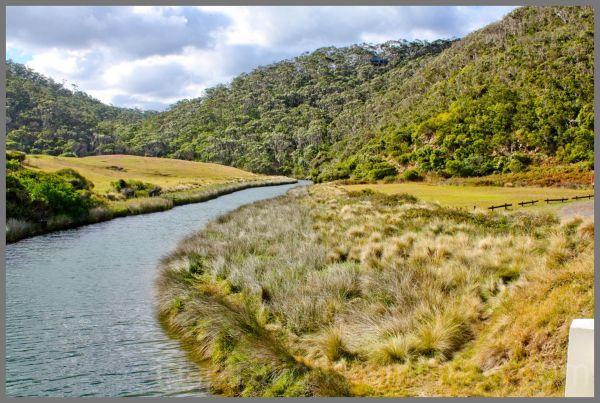 stream lorne, st georges river