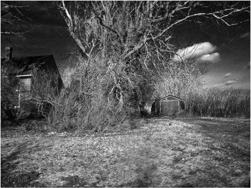 house barn trees brush rise dark sky cloud