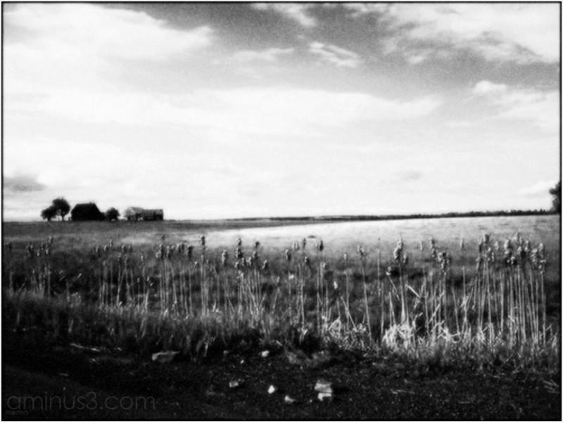 dusk deadend road farmhouse field gravel road