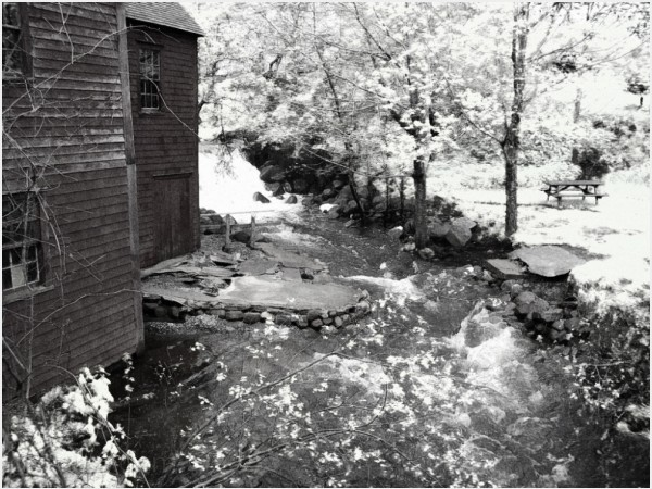 mill stream park trees water river flow swift