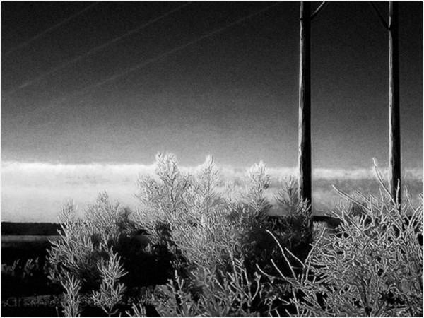 ice storm terrible beauty daybreak dawn powerlines
