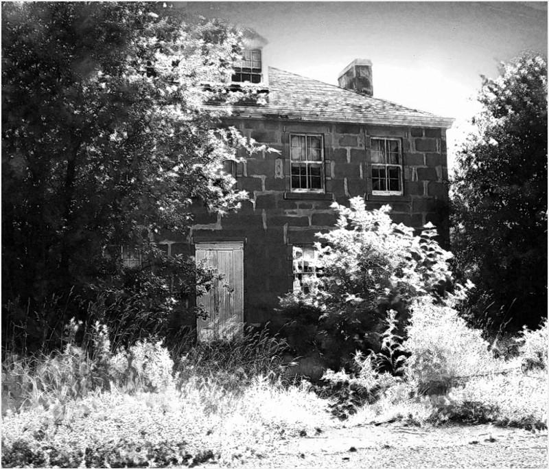 stone house tweedy brook farm overgrown abandoned