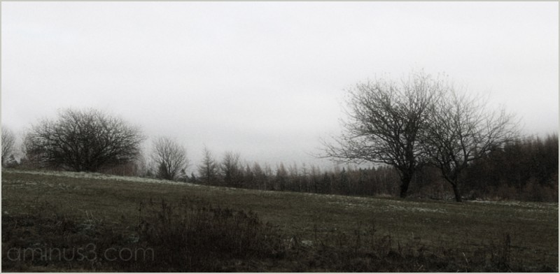 spring soggy foggy drizzling wet-wet-wet roamin