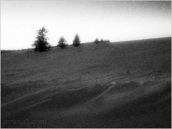 winter drifting-snow nightfall low-light hilltop