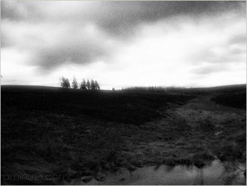 blueberry barrens pond swail dusk twilight roamin