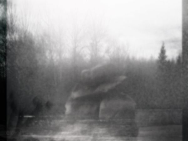double-exposure roamin cedar9 industrial-park