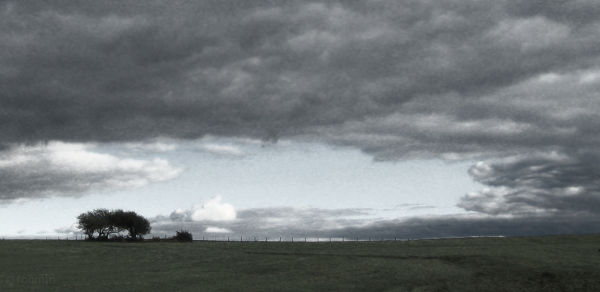 hilltop farm field orchard storm nightfall roamin