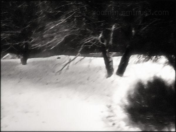 abandoned nightfall winter roamin twoism