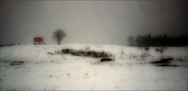 advert billboard trees snow storm bleak wasteland