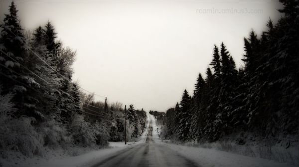 winter distance roamin snowfall rural road snow