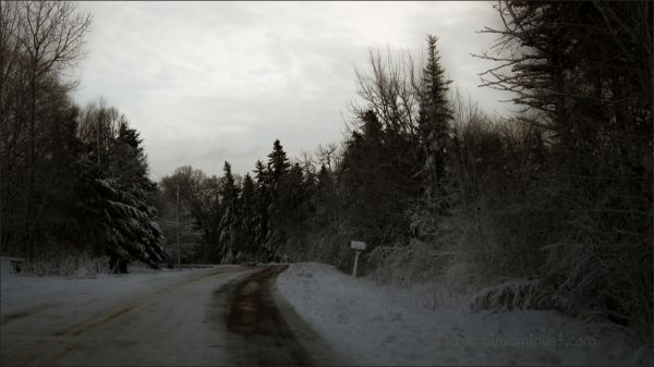 storm winter aftermath road homeward roamin dawn