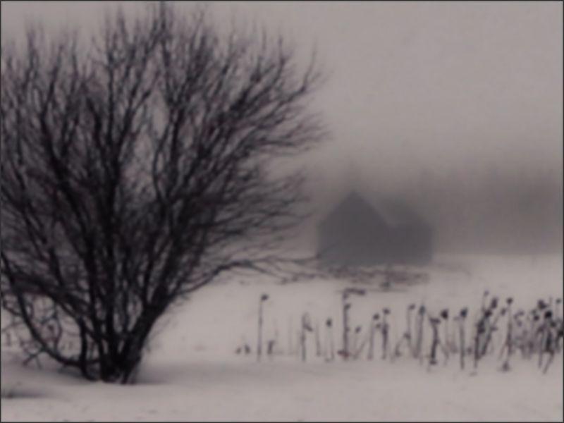 roamin snowfall storm morning-walk farm house barn