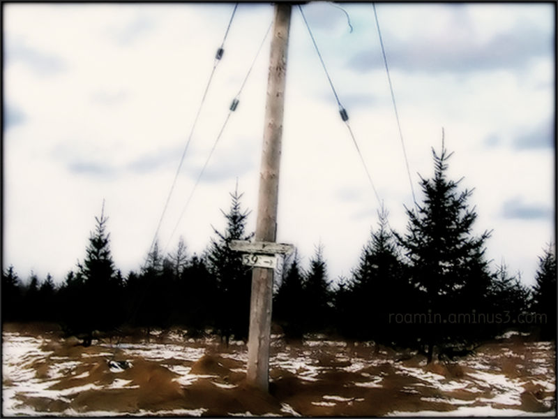 winter utility-pole number 59 sign roamin
